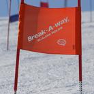 BXA512 Standard GS-Träningsflagg